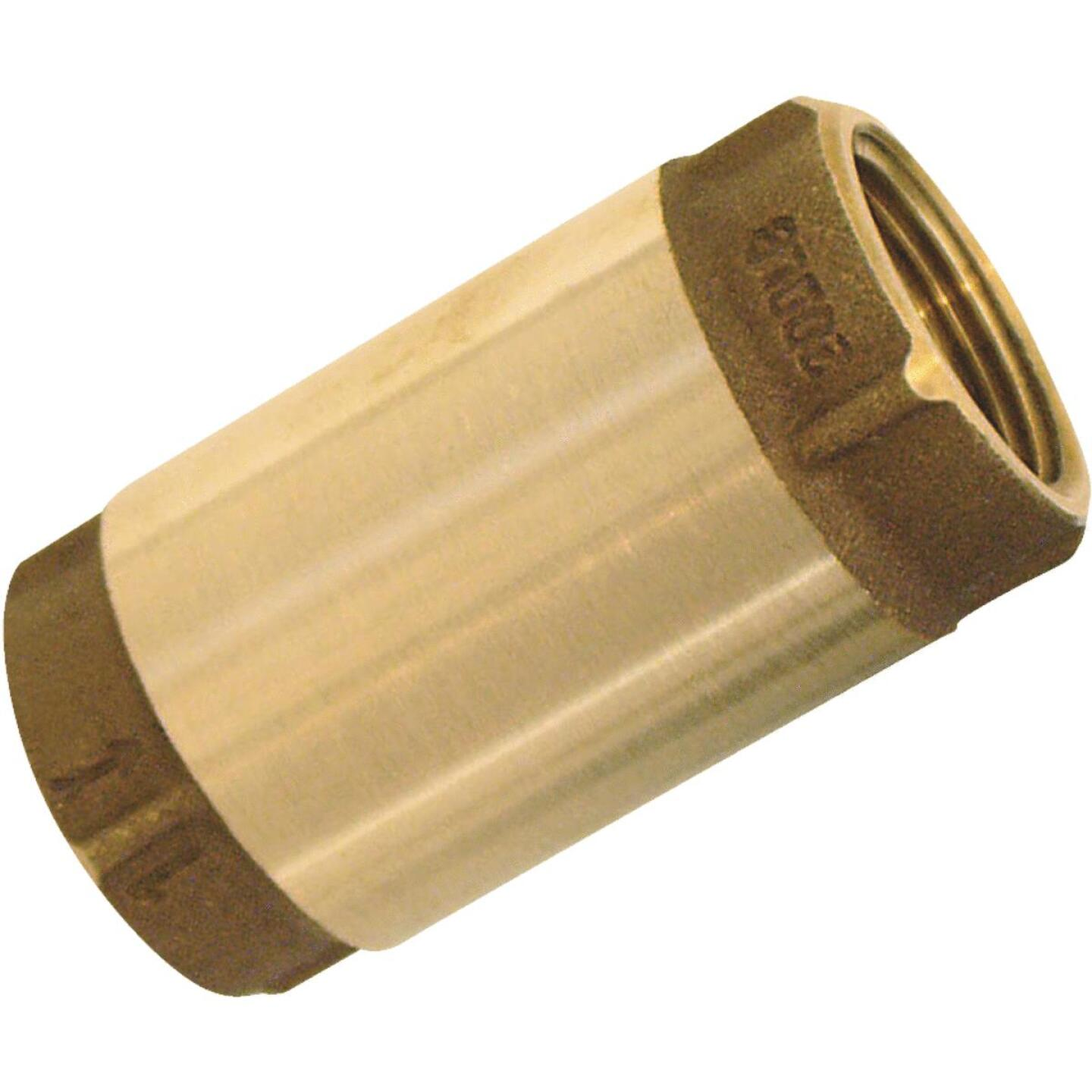 Simmons 1-1/4 In. Bronze Female Thread Check Valve Image 1