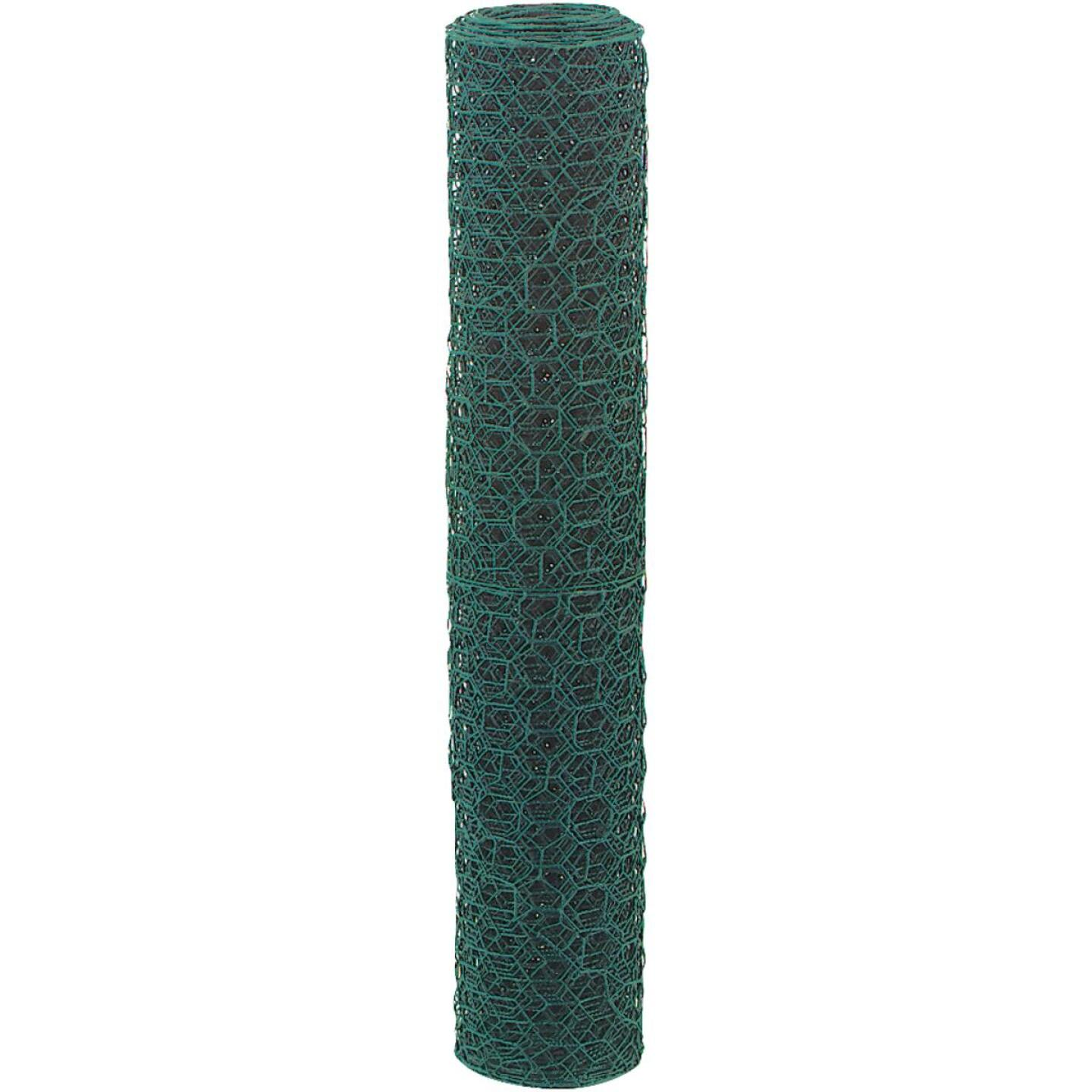 1 In. x 48 In. H. x 25 Ft. L. Green Vinyl-Coated Poultry Netting Image 2
