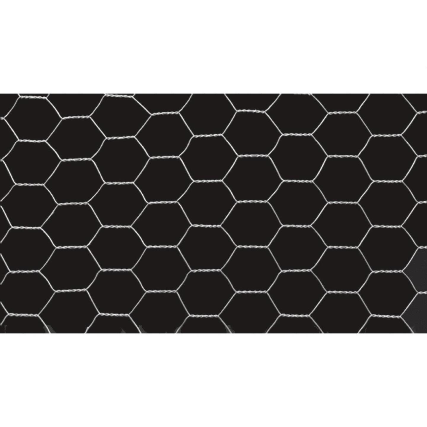 1/2 In. x 24 In. H. x 10 Ft. L. Hexagonal Wire Poultry Netting Image 4